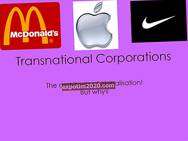 La definizione di azienda multidomestic