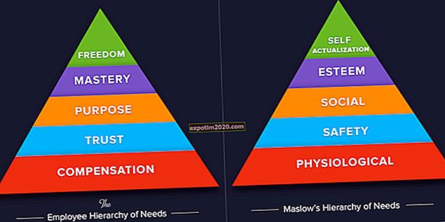La gerarchia dei bisogni dei dipendenti